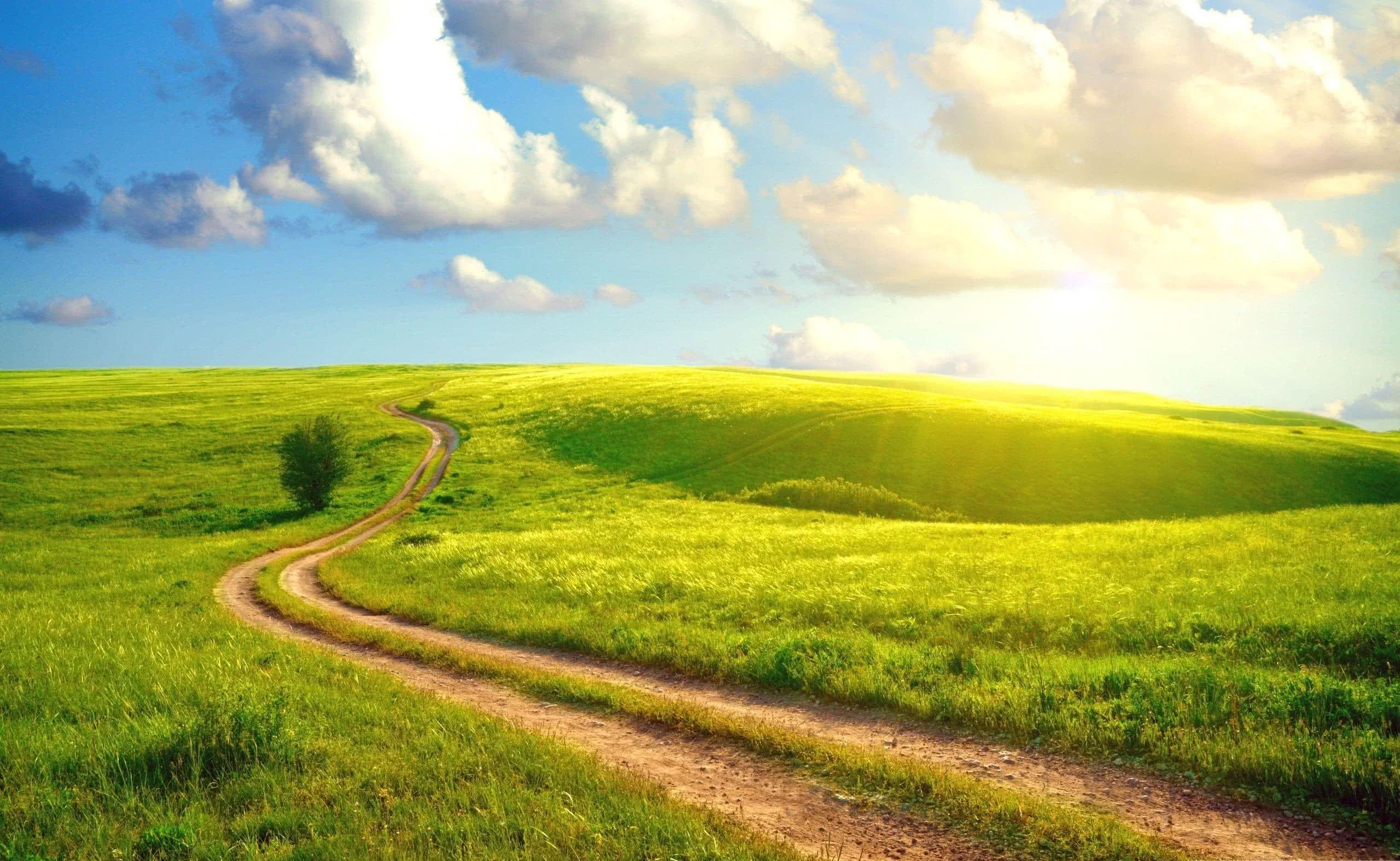 Field Path O